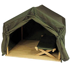 Tent and Cot