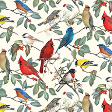 Pretty Birds on Cream Fabric