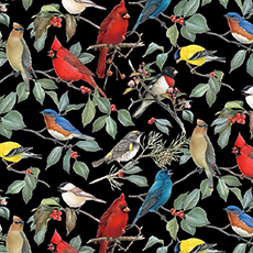 Pretty Birds on Black Fabric